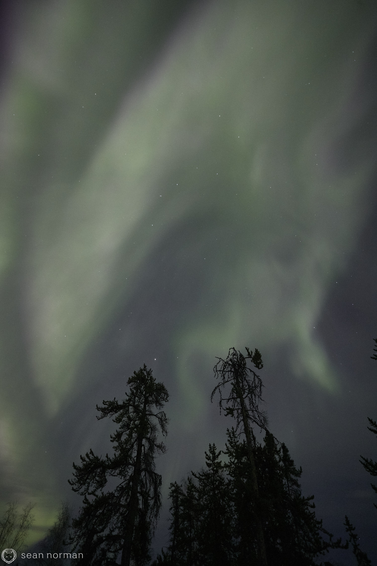 Yellowknife Aurora Tour - Northern Lights Canada - 13.jpg