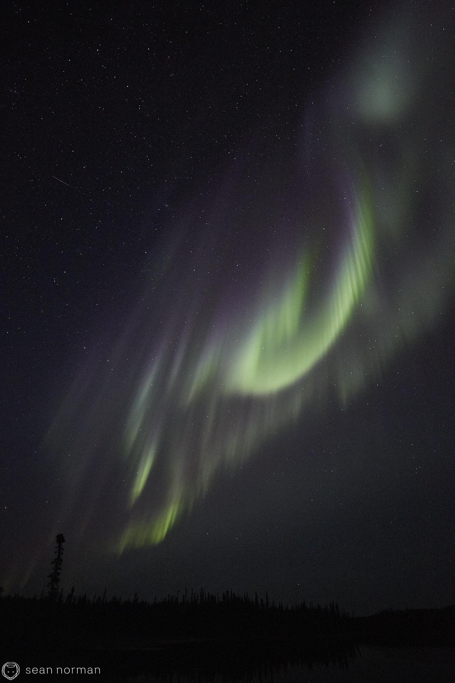 Yellowknife Aurora Guide - Northern Lights Summer Yellowknife -  12.jpg