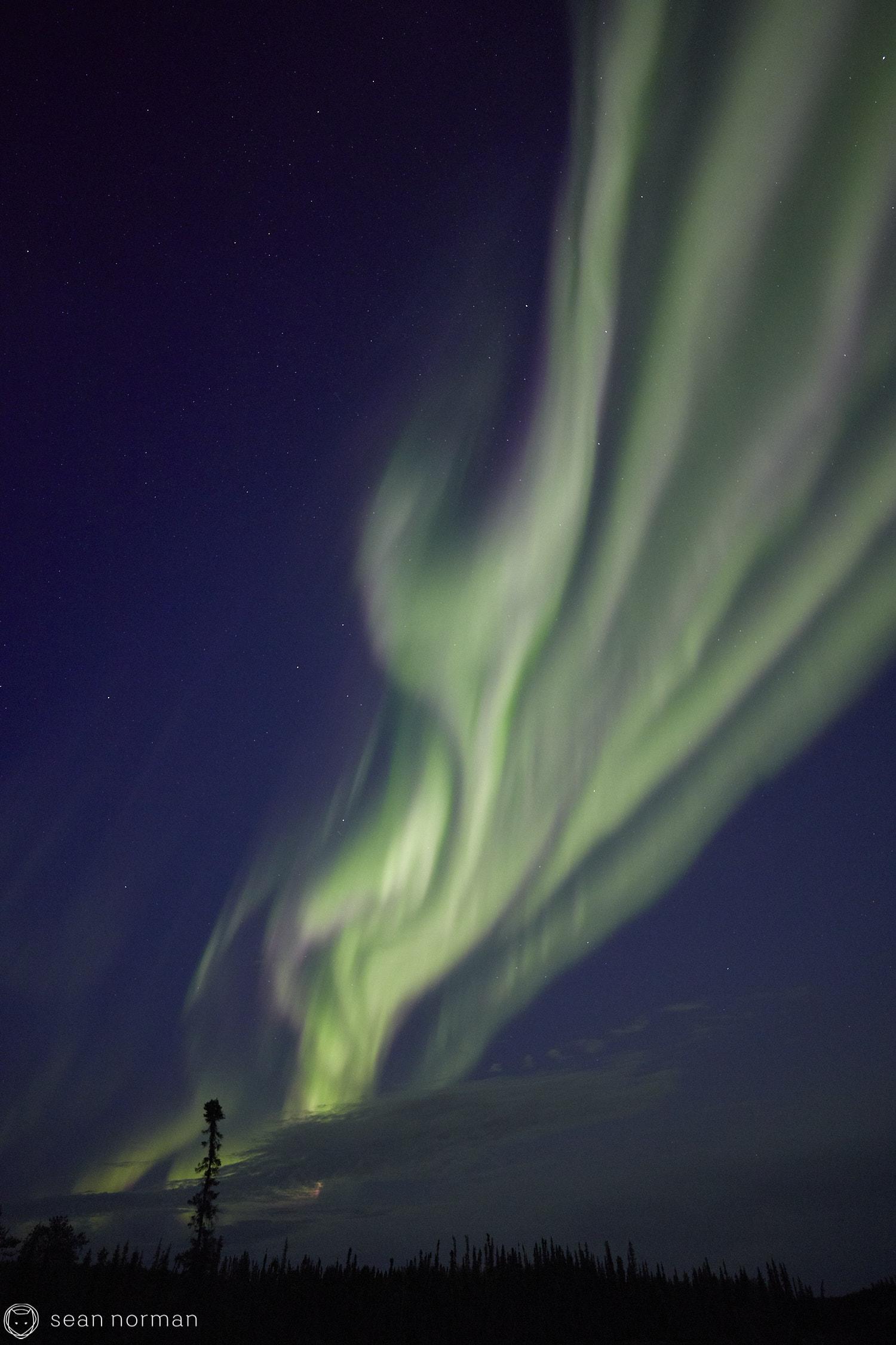 Yellowknife Aurora Guide - Northern Lights Summer Yellowknife -  14.jpg