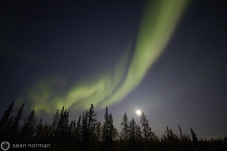 Yellowknife Aurora Guide - Northern Lights September Yellowknife -  05.jpg