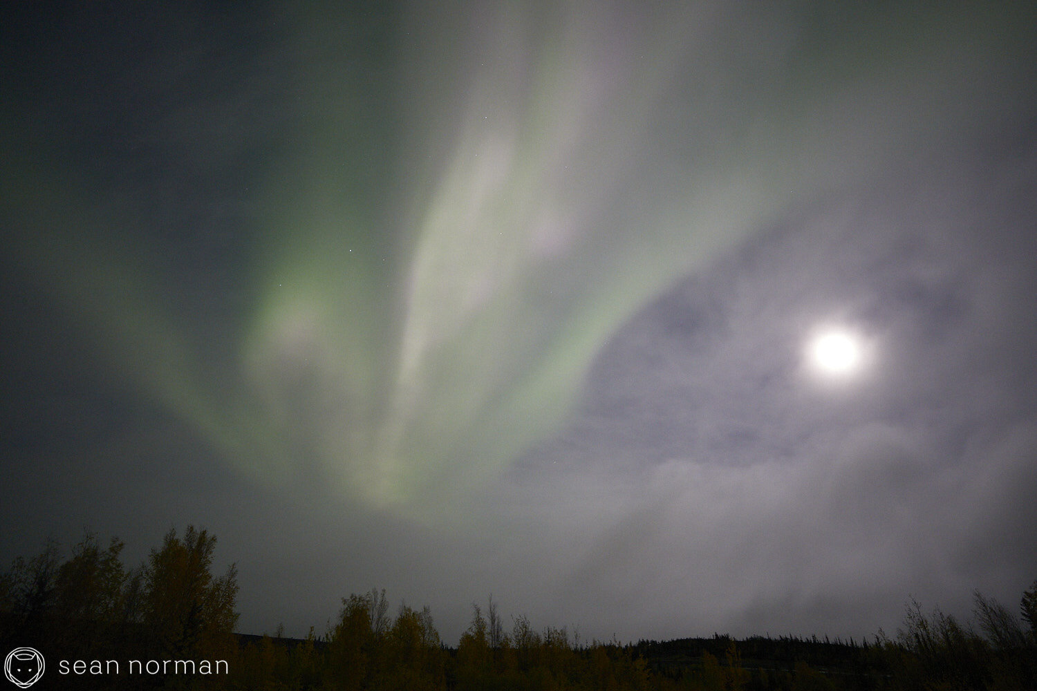 Yellowknife Aurora Guide - Northern Lights September Yellowknife -  17.jpg