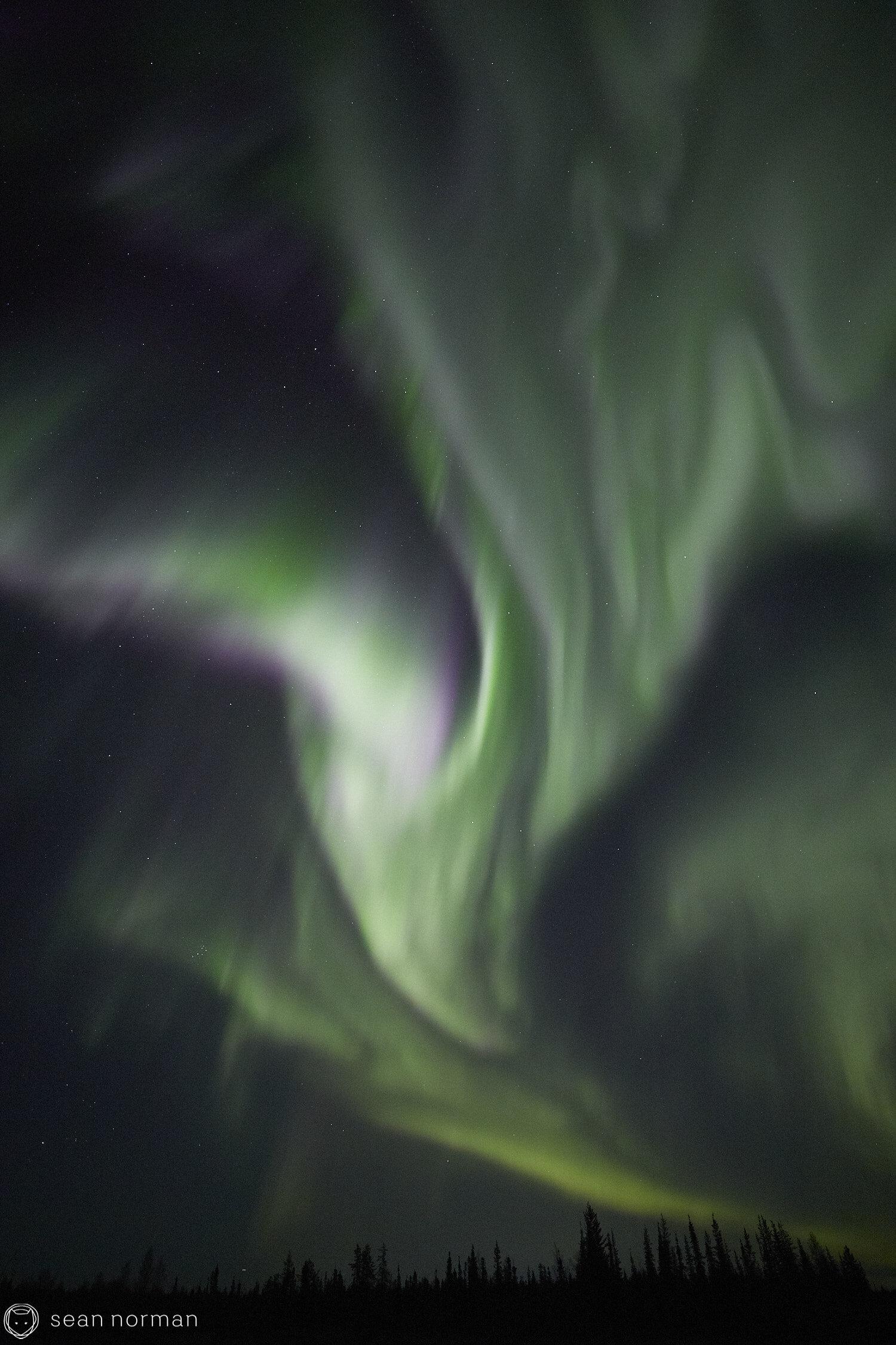 Yellowknife Aurora Guide - Northern Lights September Yellowknife -  46.jpg