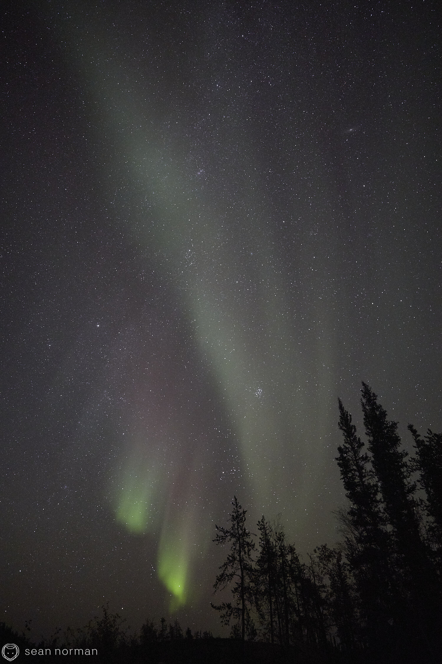 Yellowknife Aurora Guide - Northern Lights September Yellowknife -  58.jpg