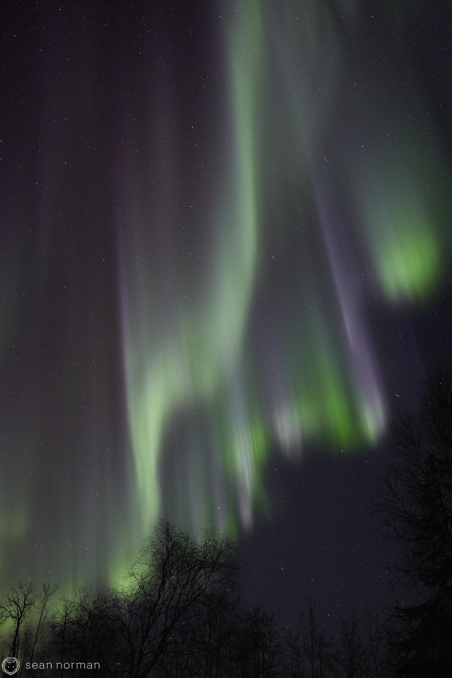 Yellowknife Aurora Guide - Northern Lights Viewing Tour -  05.jpg