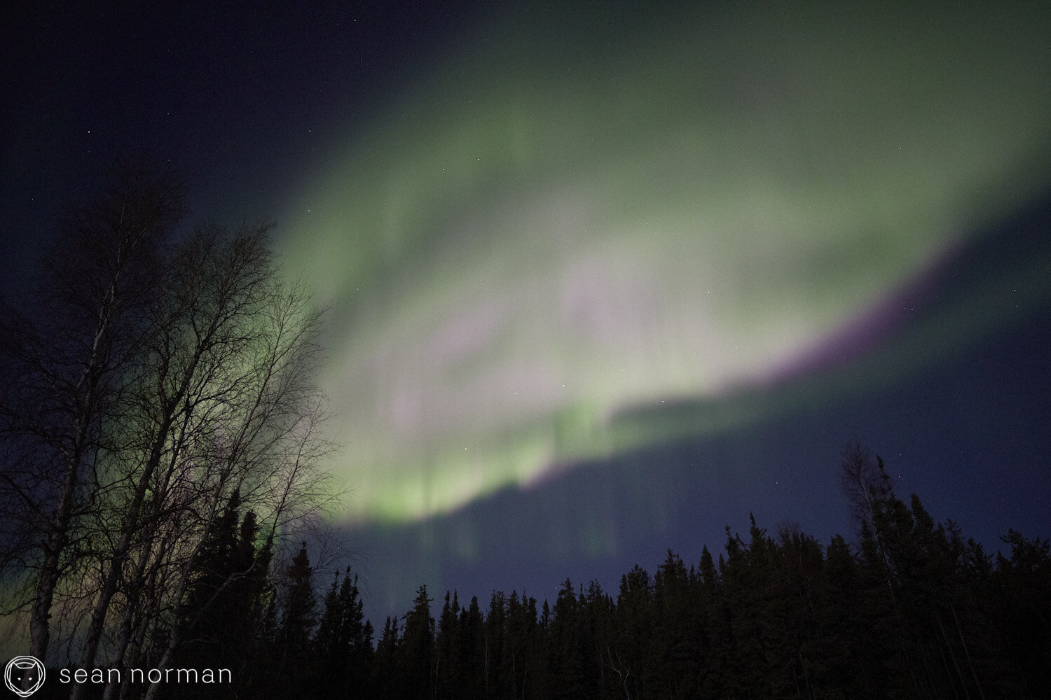 Yellowknife Aurora Guide - Northern Lights Viewing Tour -  27.jpg