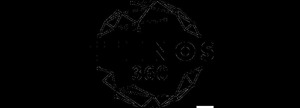 Ethnos360 Logo black.png