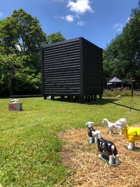 Black Cube in Owhango Landscape: Homage to Sol Le Witt