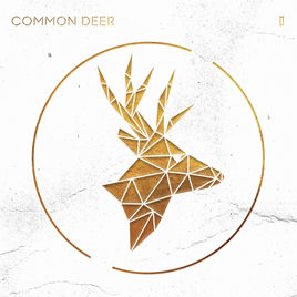 Common Deer - II - 2017 (Assistant Engineer)