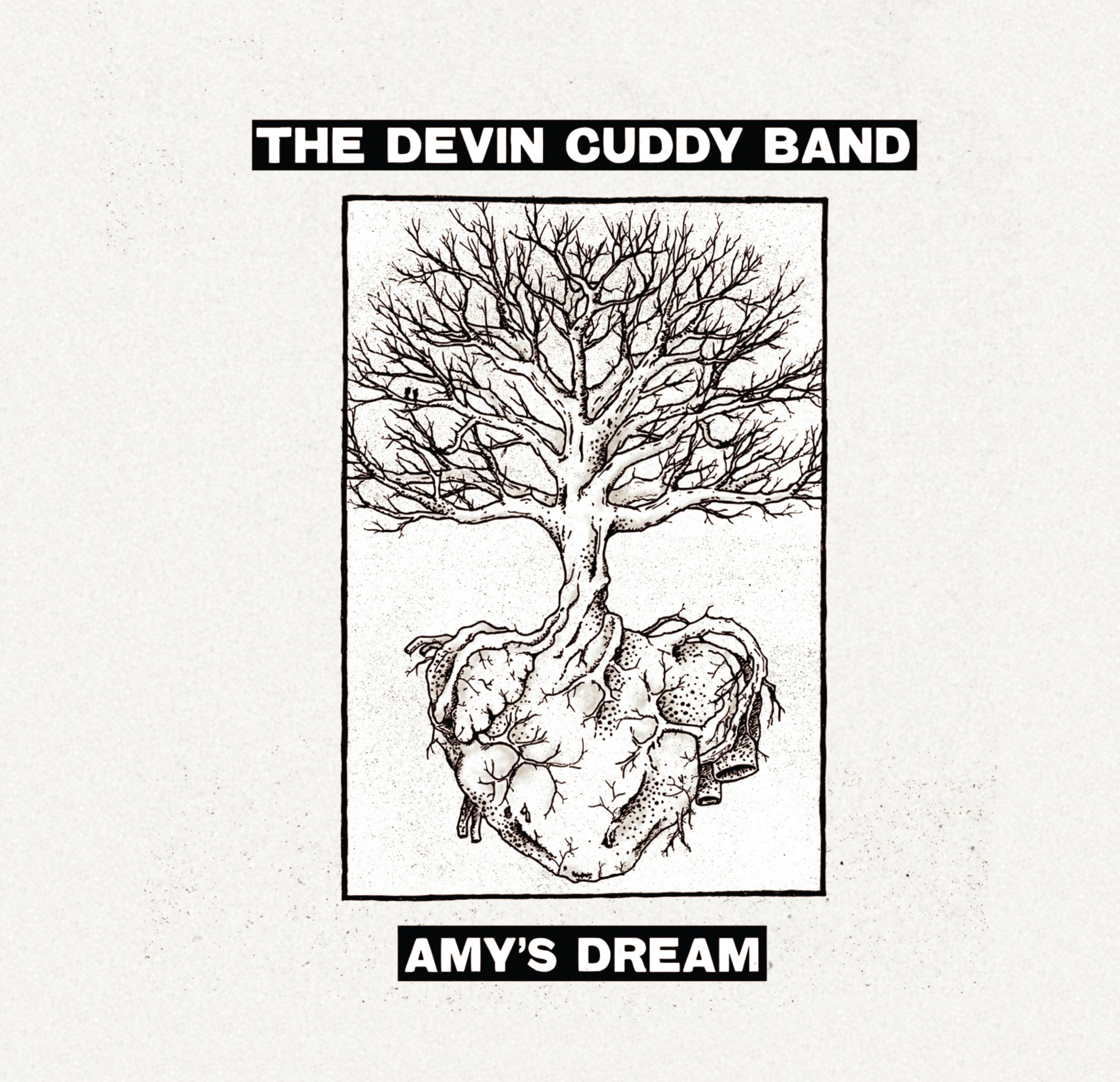Devin Cuddy Band - Amy's Dream - 2018 (Assistant Engineer)