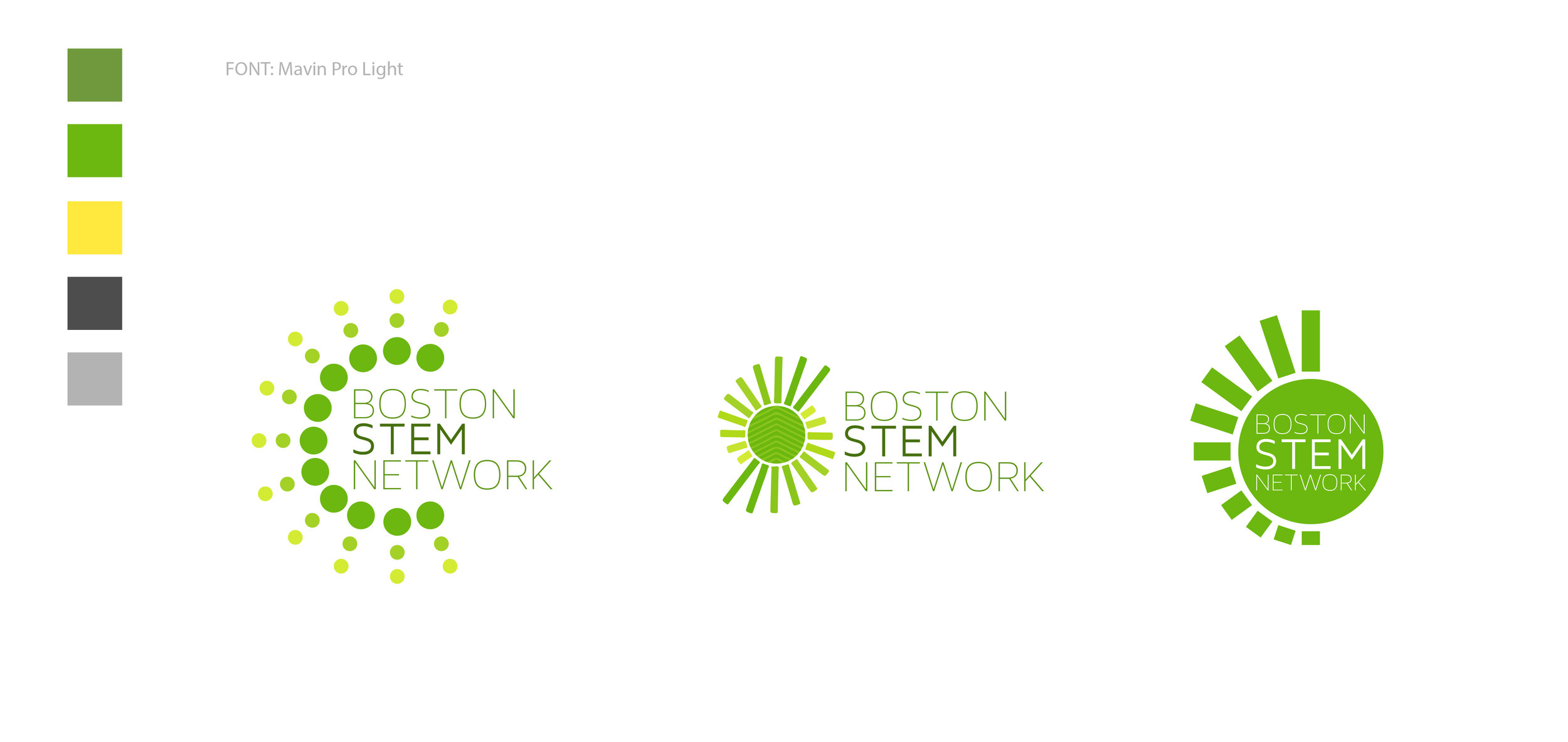 BostonStem.jpg