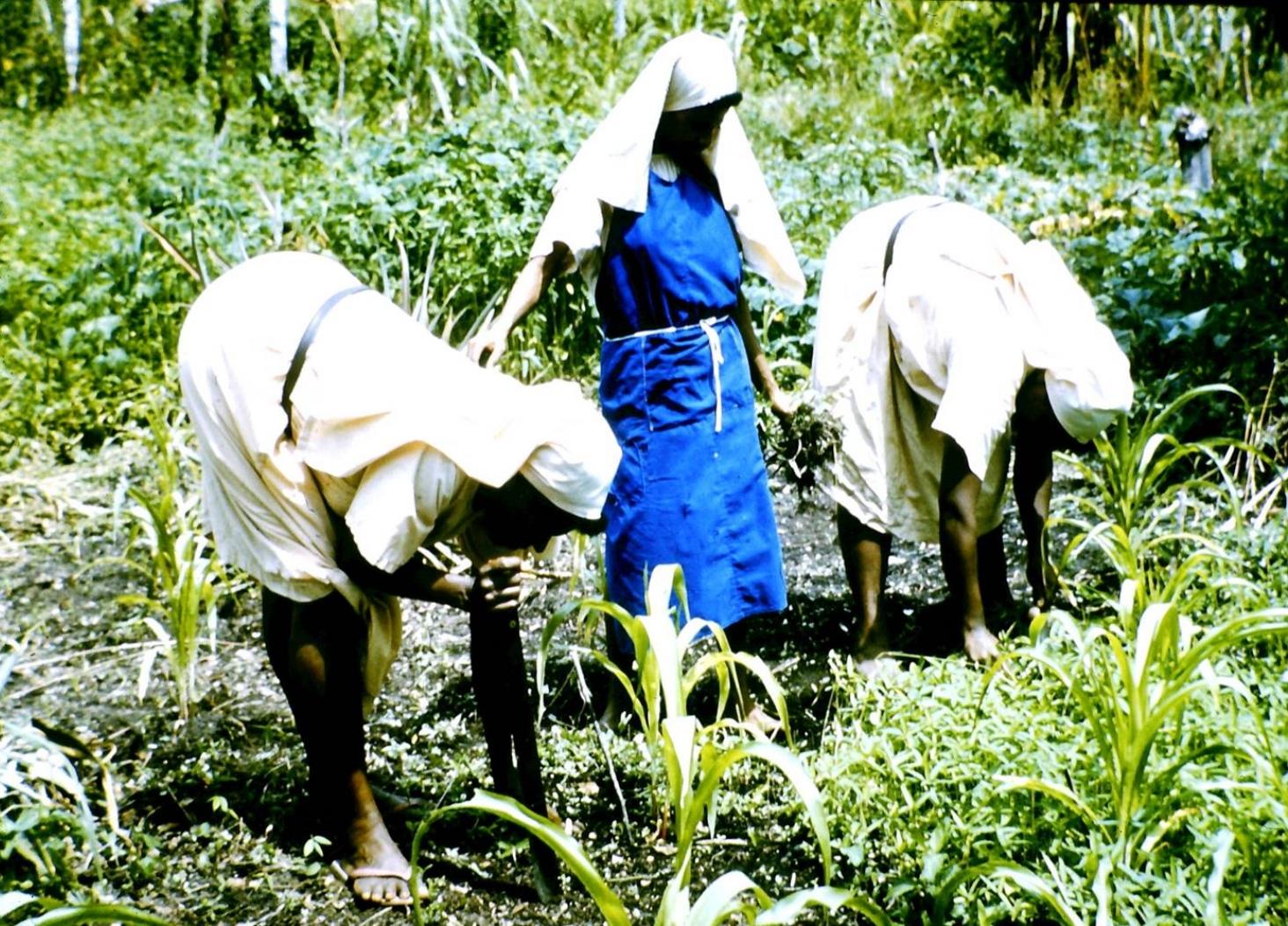 Sisters tending their vegetable garden.