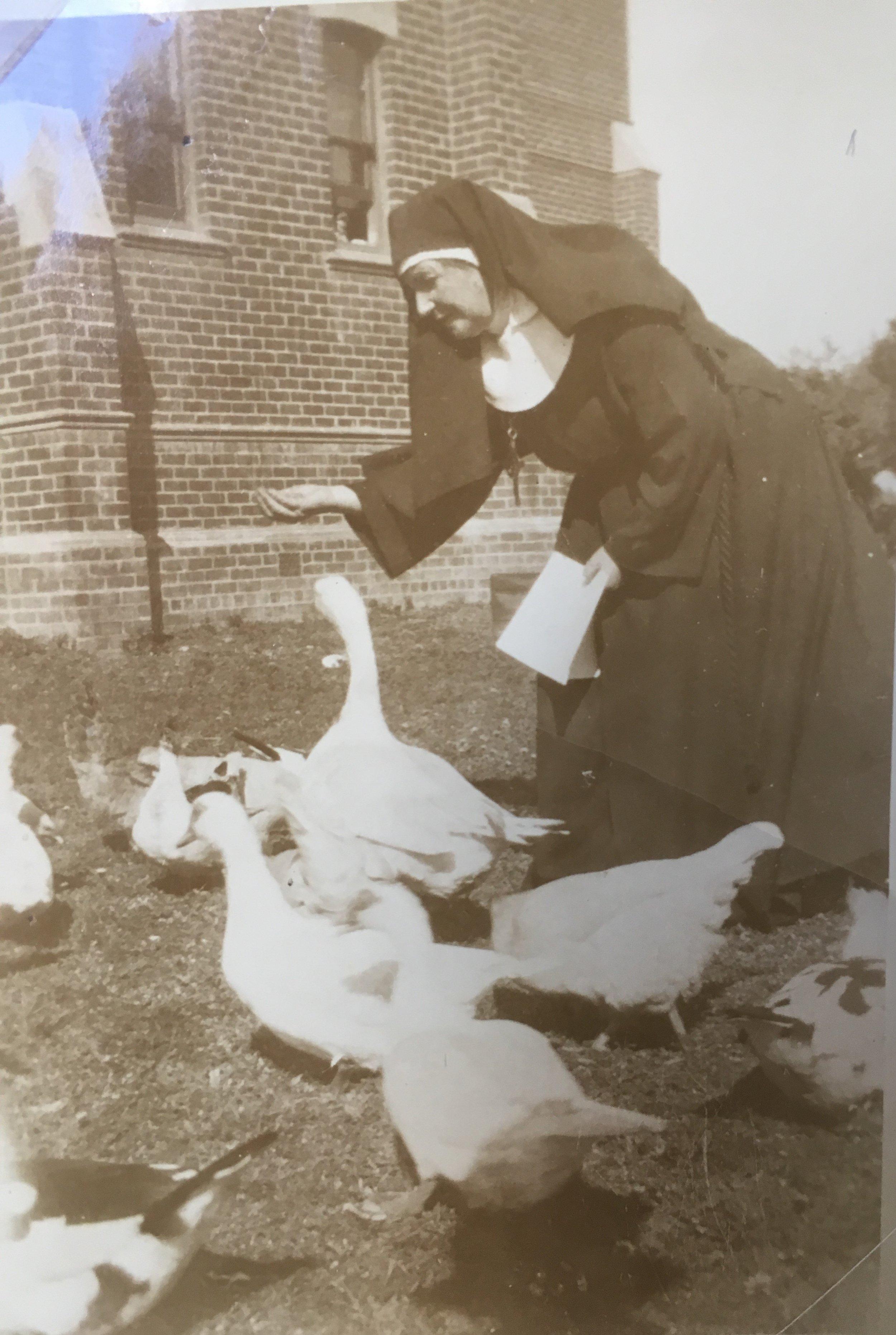 1933 Sr Christina & ducks