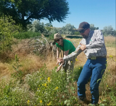 Following the Information Forum, several attendees took an impromptu field trip out to a nearby location that has been invaded by garlic mustard and other invasive weeds.Pictured: Michelle Delepine, Council member & Theodore Orr, Umatilla Co. Weed Supervisor. Photo Credit: Wyatt Williams, Council member.