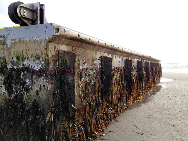 Newport, OR: A large concrete dock that floated ashore after the 2011 tsunami in Japan (Photo Credit: Oregon Live).