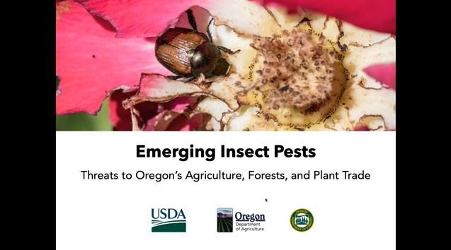 Opening slide for of Emerging Pests webinar.