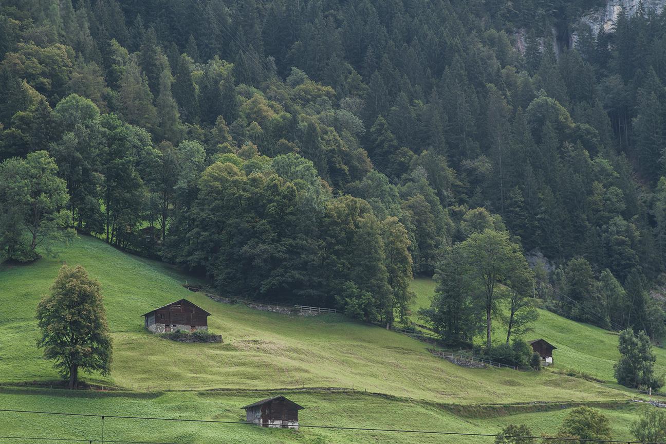 Switzerland_PH408.jpg