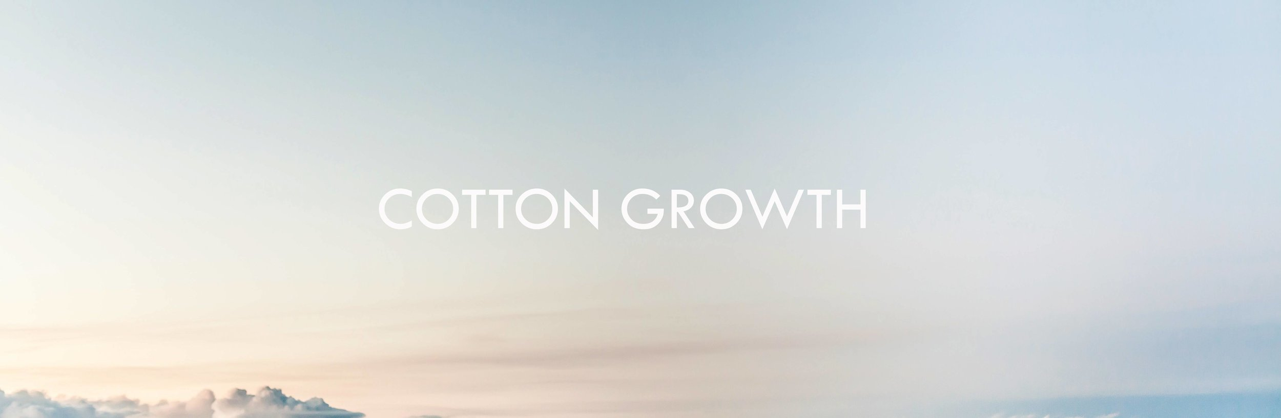 cotton_growth_final.jpg