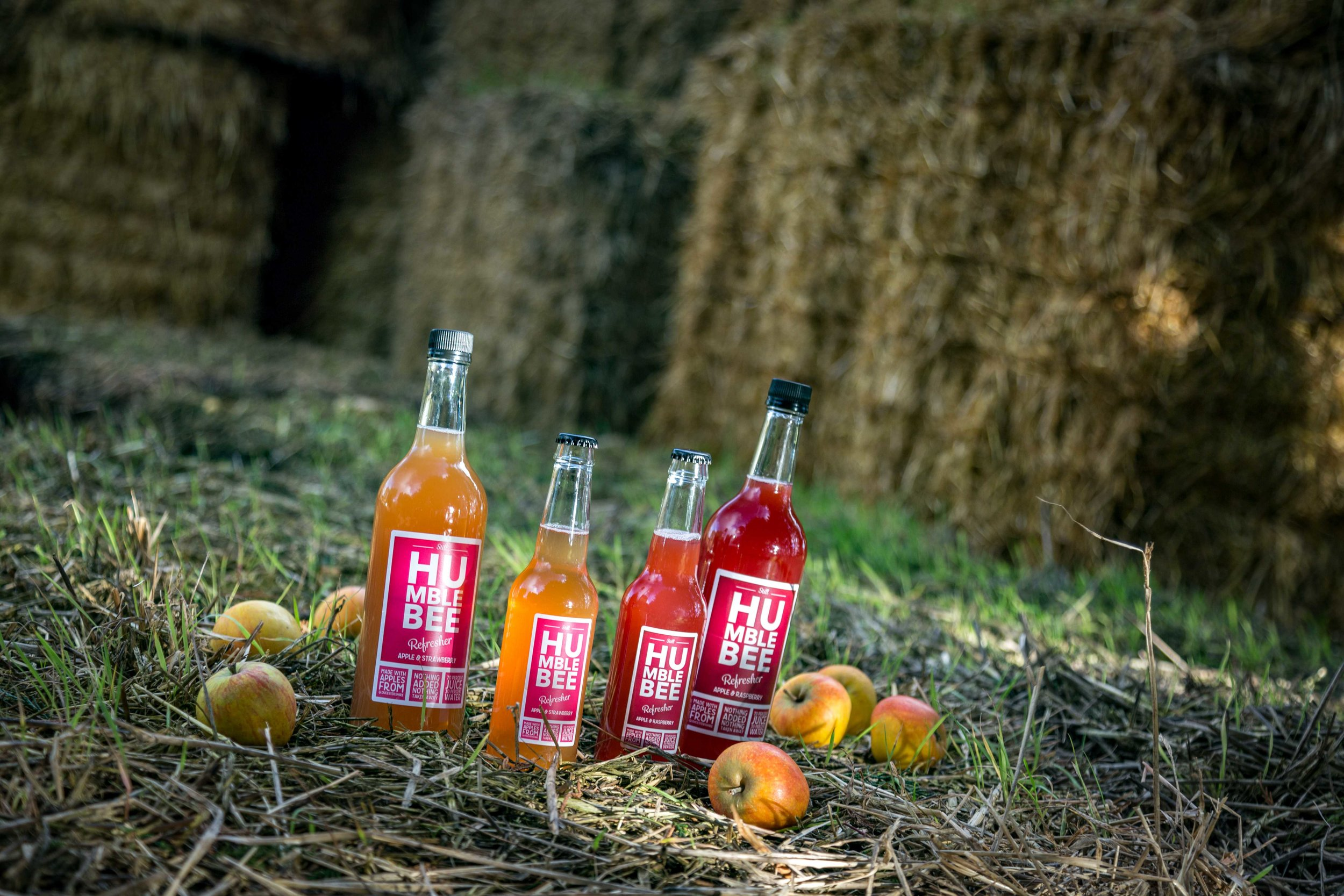 Humblebee Refresher Brand 4 dappled straw with apples v2.jpg