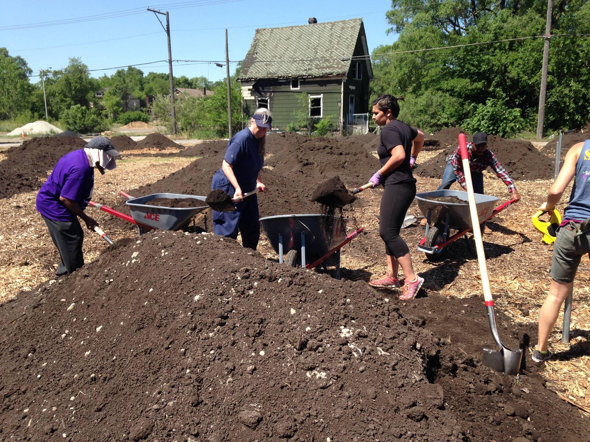 Community volunteers and Council volunteer Setel Holden-Villars