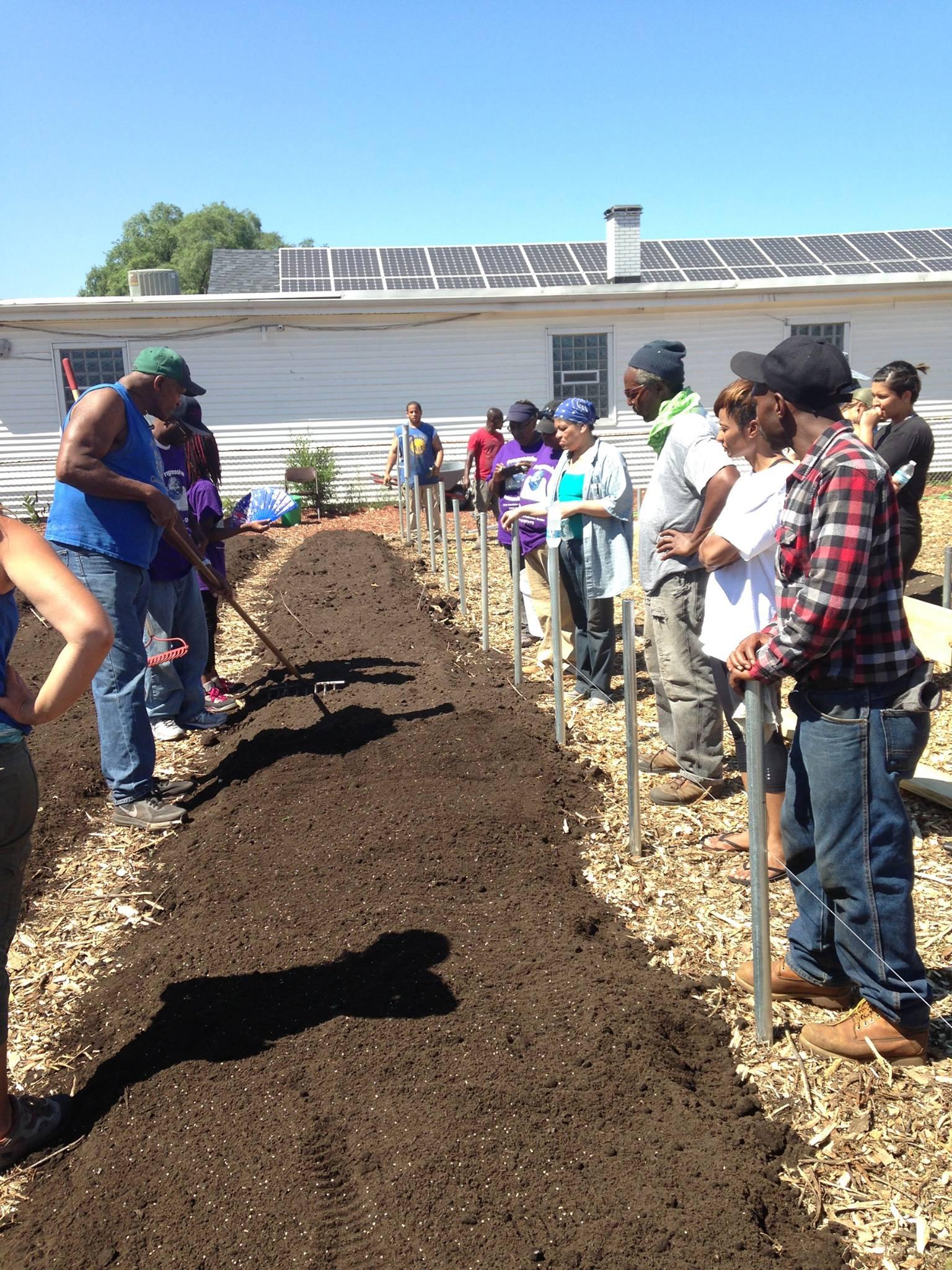 Will Allen demonstrates raking in the seeds
