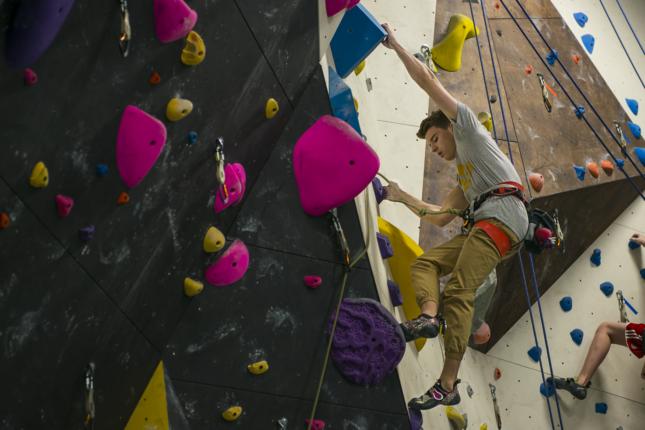 Competitive Team — The Core Climbing Gym
