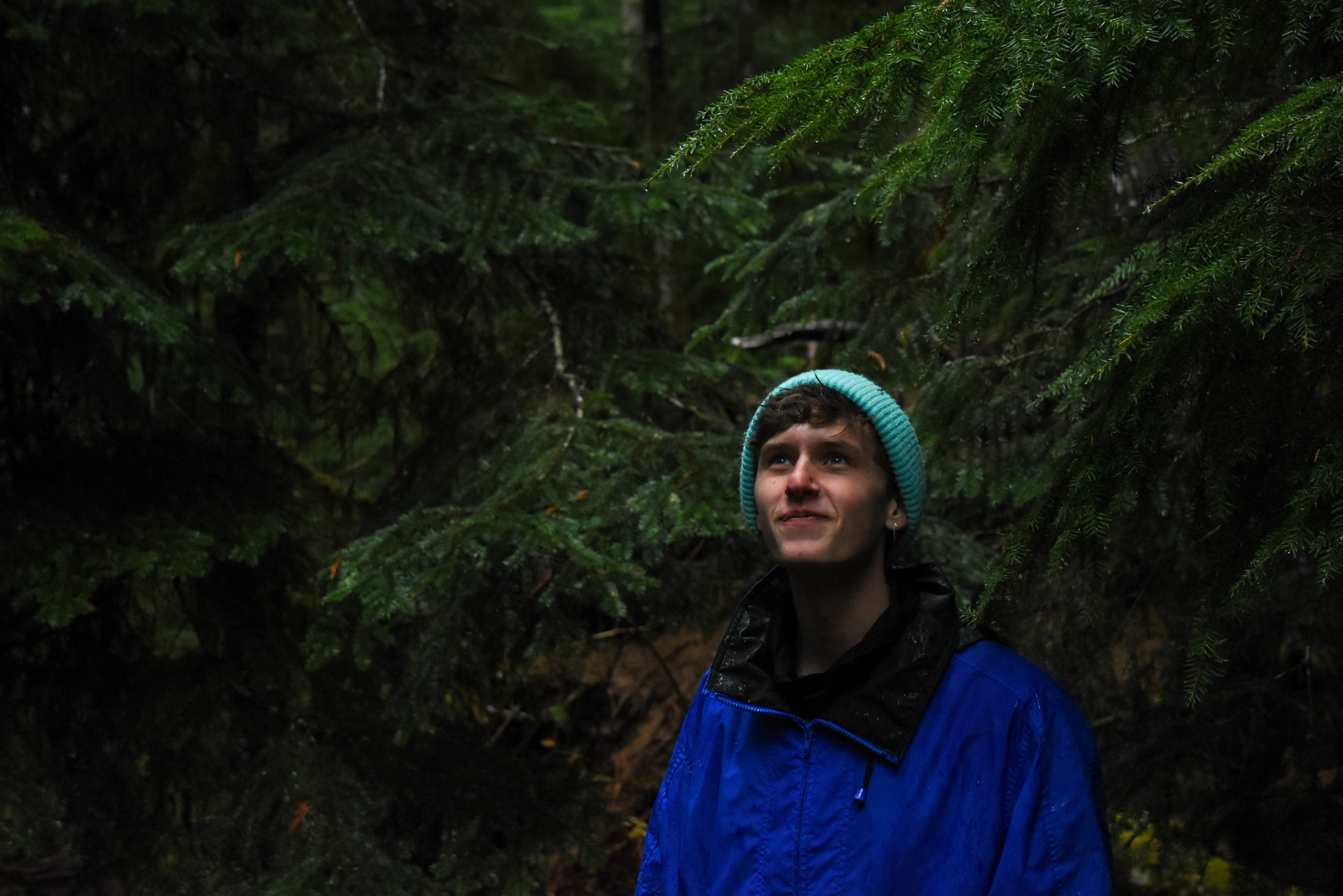 My friend gazed in awe at the lush emerald foliage in a forest at the base of Mt. Rainier. Less than an hour earlier, we had been covered in snow while hiking near the mountain's peak.