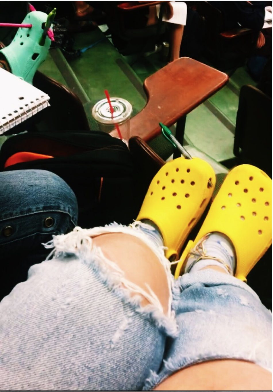 The Crocs in question.