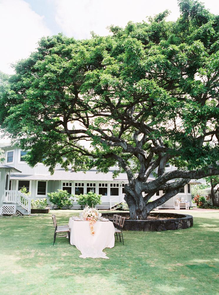 00028- Fine Art Film Hawaii Oahu Wedding Photographer Sheri McMahon.jpg