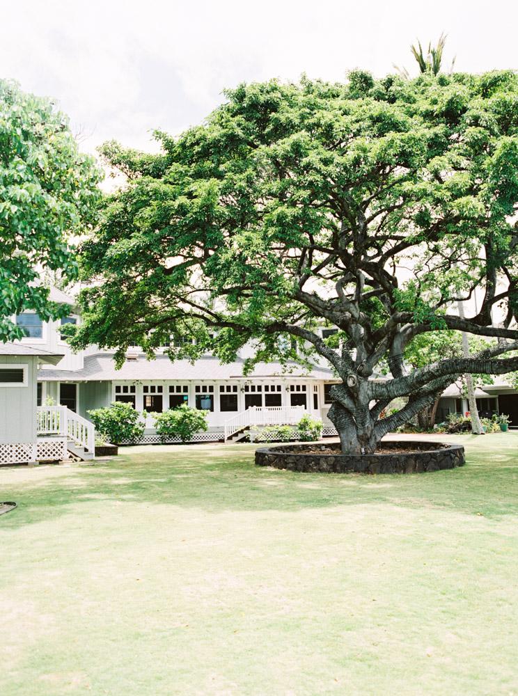 00020- Fine Art Film Hawaii Oahu Wedding Photographer Sheri McMahon.jpg