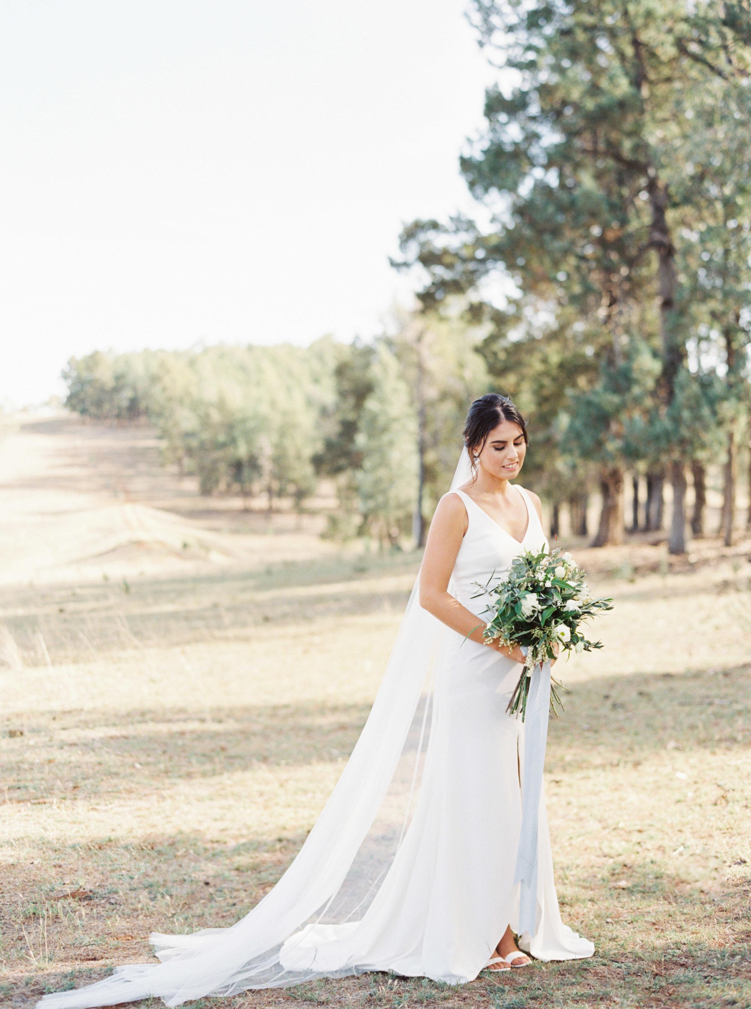 00045- Olive Tree Mediterranean Wedding in Mudgee NSW Australia Fine Art Film Wedding Lifestyle Photographer Sheri McMahon_.jpg