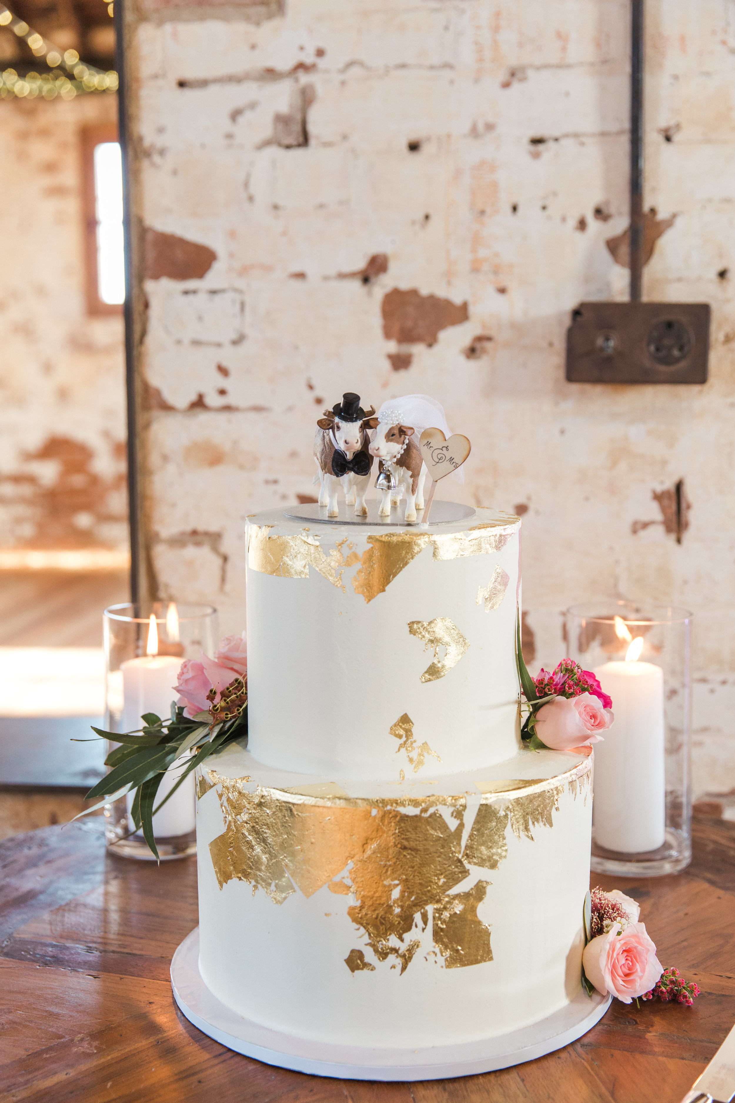 00112- Goonoo Goonoo Station Wedding Tamworth NSW Fine Art Film Wedding Photographer Sheri McMahon_.jpg