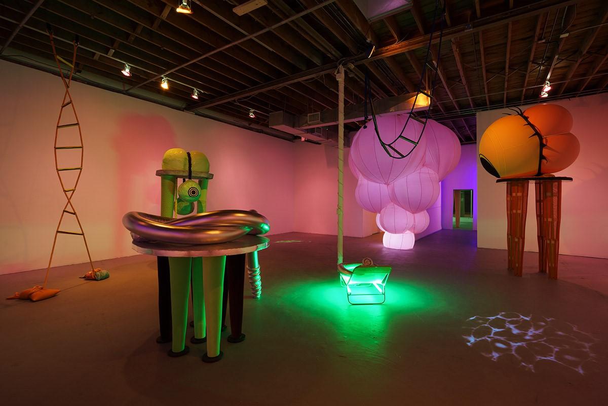 Image:   Nancy Davidson at Locust Projects