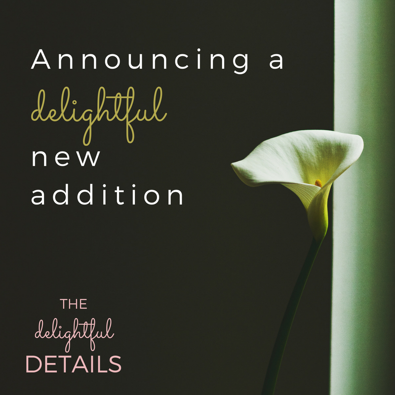 Coming October 2017 - Welcome Baby L to The Delightful Details!