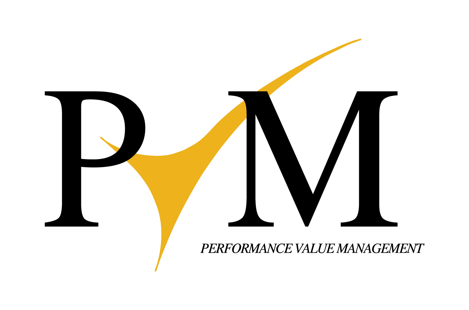 PerformanceValueManagement_PVM_Logo_201510.png