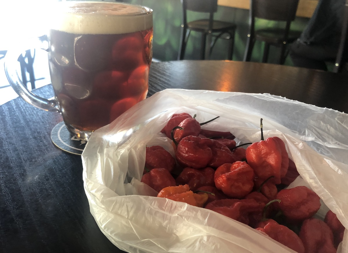Cold beers and lethally hot chilis. A good combination?