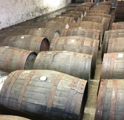 CASKS MATURING IN THE WAREHOUSE AT BALBLAIR DISTILLERY (JSW 2017)
