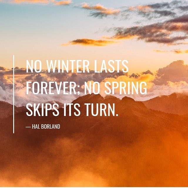 #WinterSolstice #Solstice #livessharedbeautifully #loveandloss #lifestories #madewithheart #letterpress #madewithlove #sharingisanactoflove