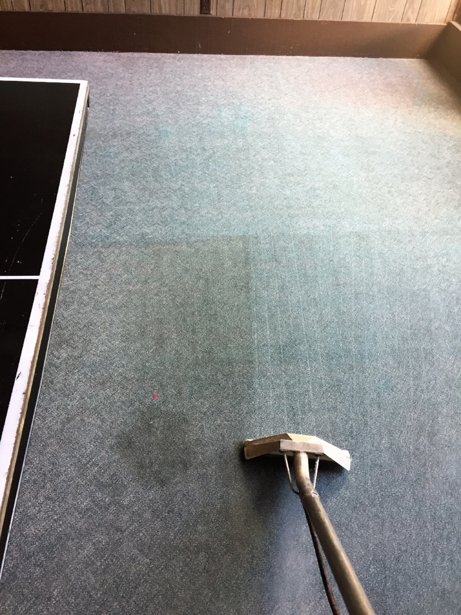 Commercial Carpet Cleaning in Progress