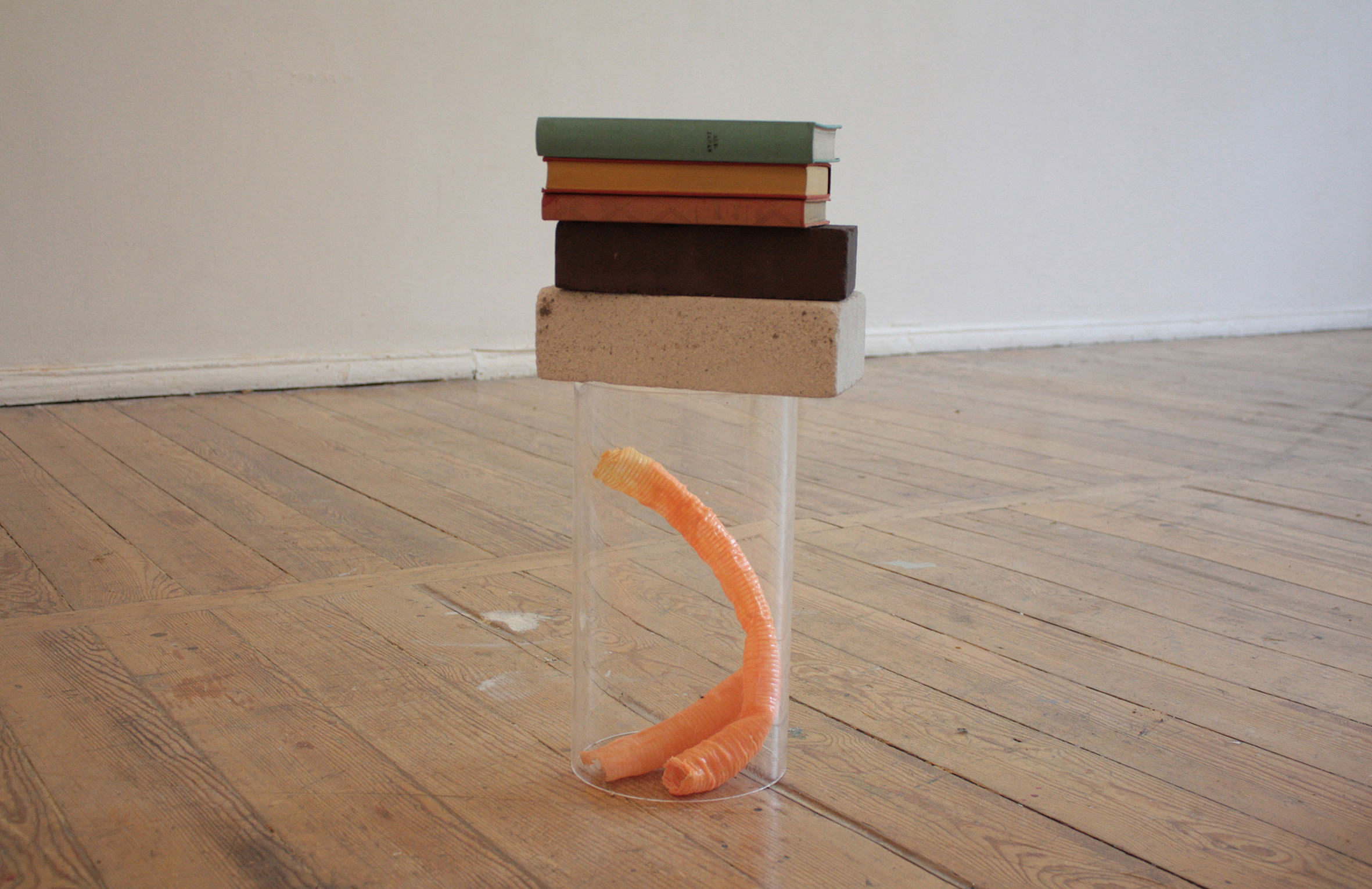 nontitle   2015  plastic,latex,books  30cm x 30cm x 40cm