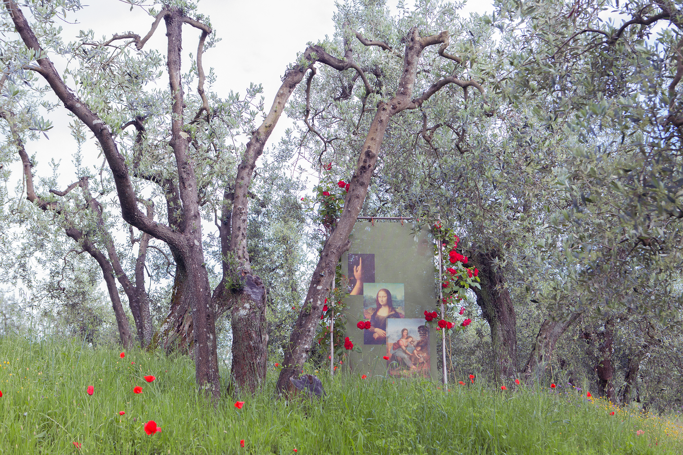 Reproductions of Leonardo's works decorate the path that, among olive groves and vineyards, leads from Vinci to the artist's home in Anchiano.