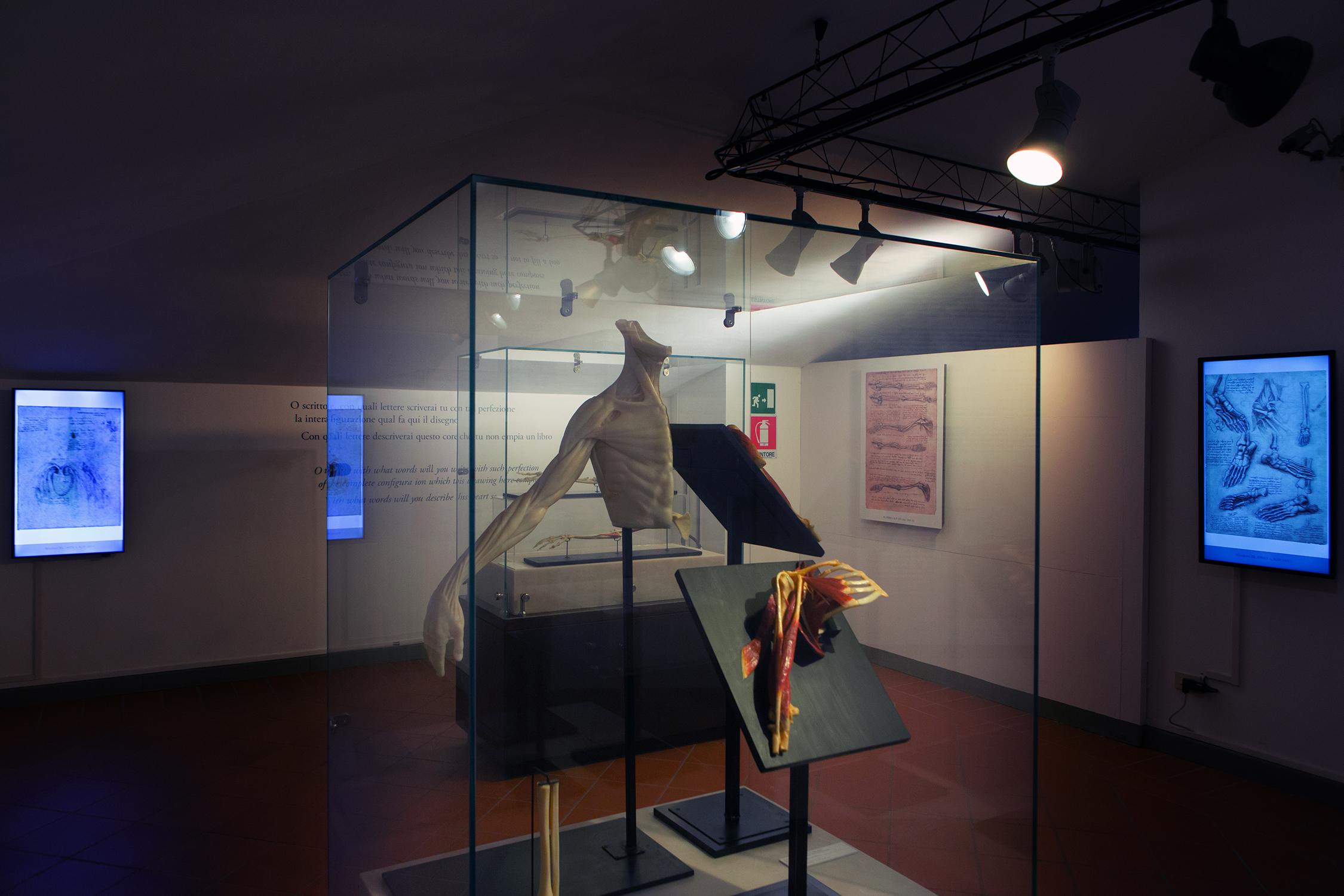 Museo leonardiano di Vinci (FI).