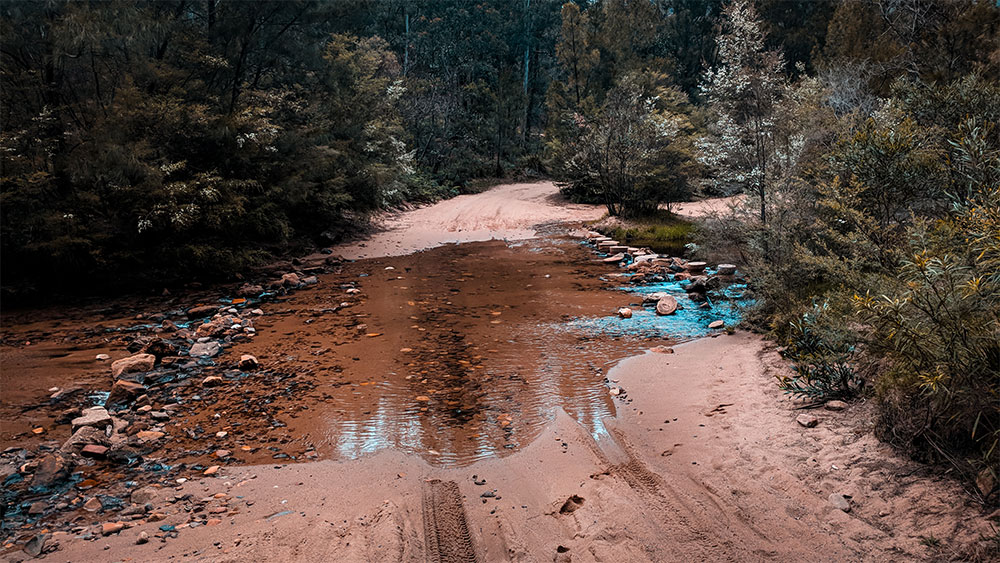 How to get to the top of Mystery Mountain, Newnes