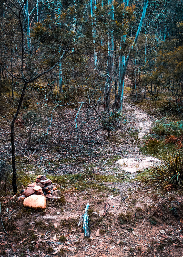 Mystery Mountain trail head, Newnes campground