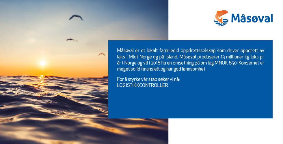 Masoval_hfjobb_heading_logistikk.jpg
