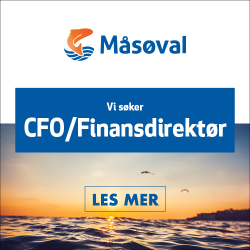 HFjobb_boks_Masoval_CFO_500x500.jpg