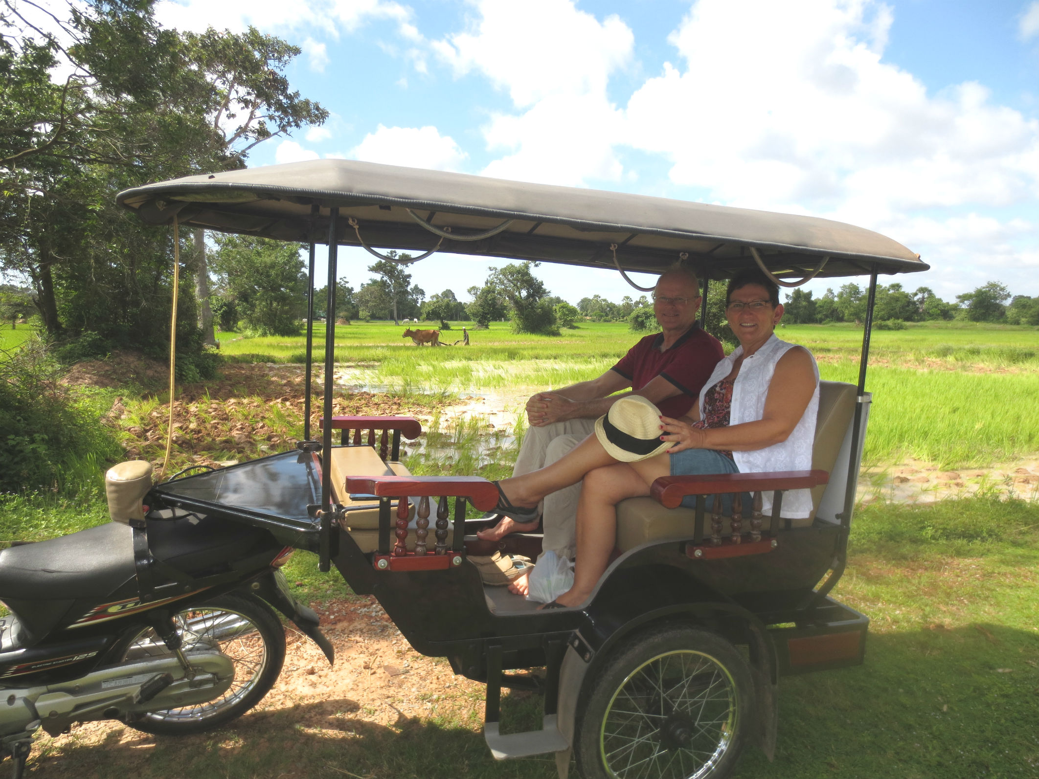 Tuk-tuk in the paddy fields