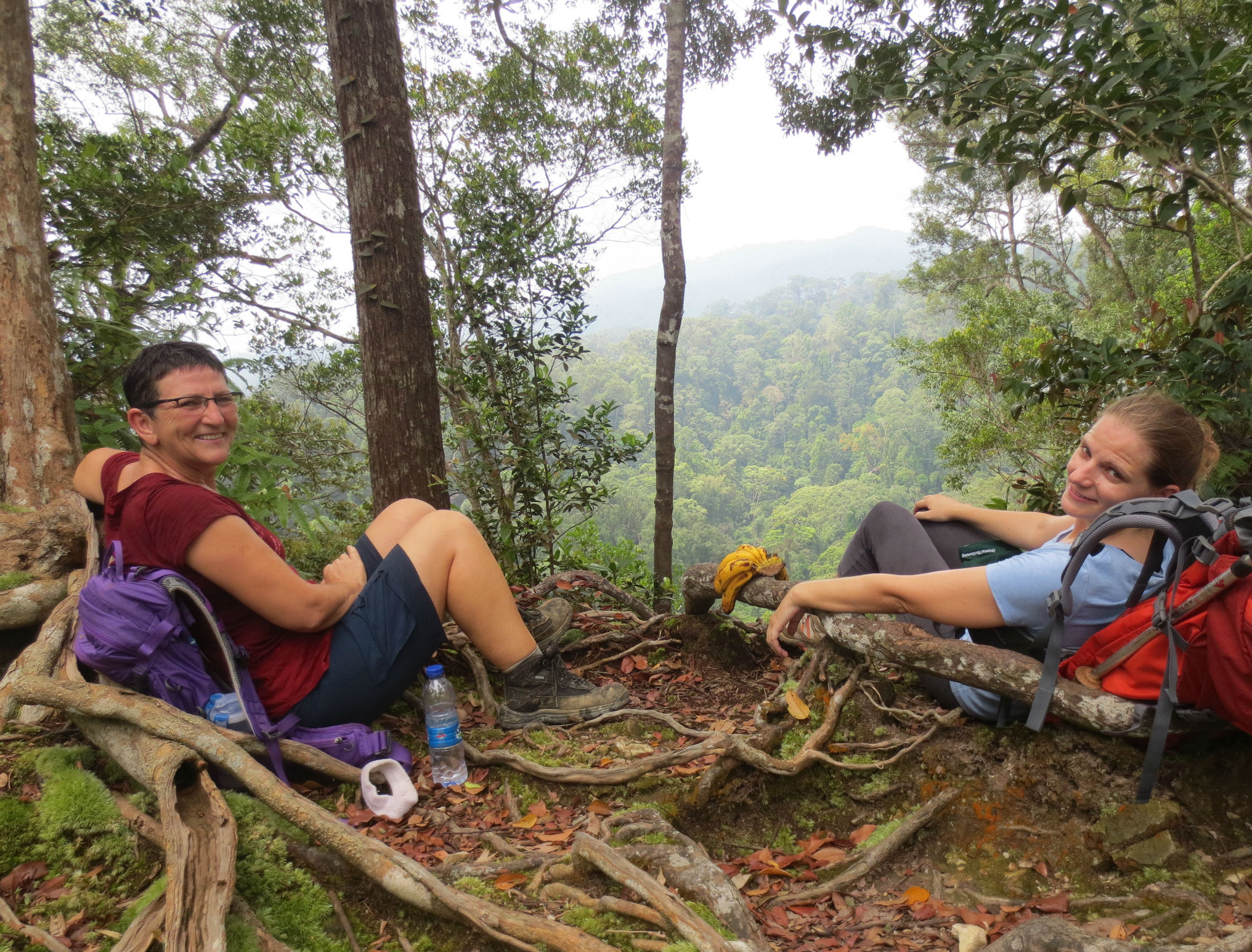Gunung Leuser National Park Sumatra