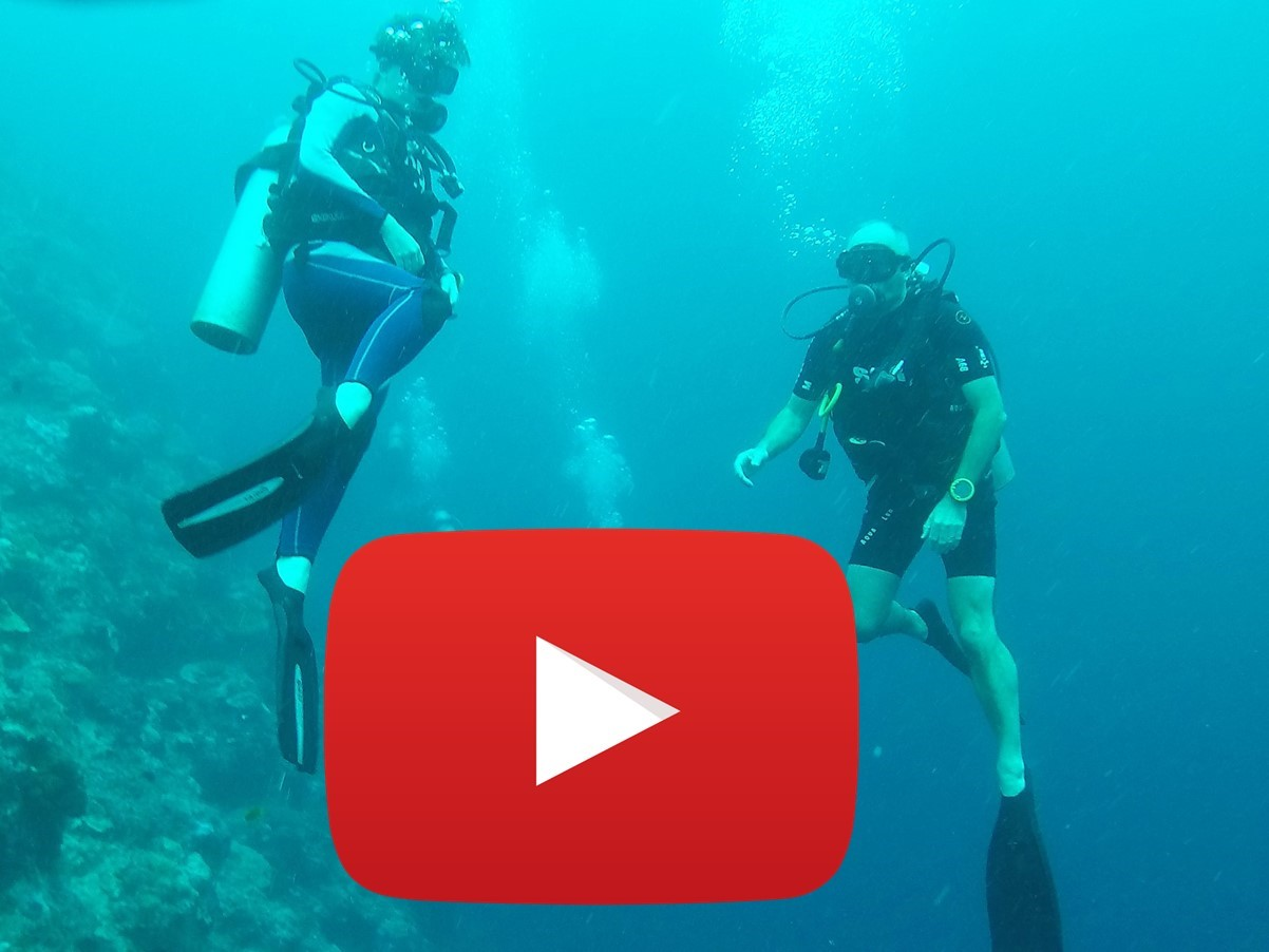 Marcella & Frank underwater video footage
