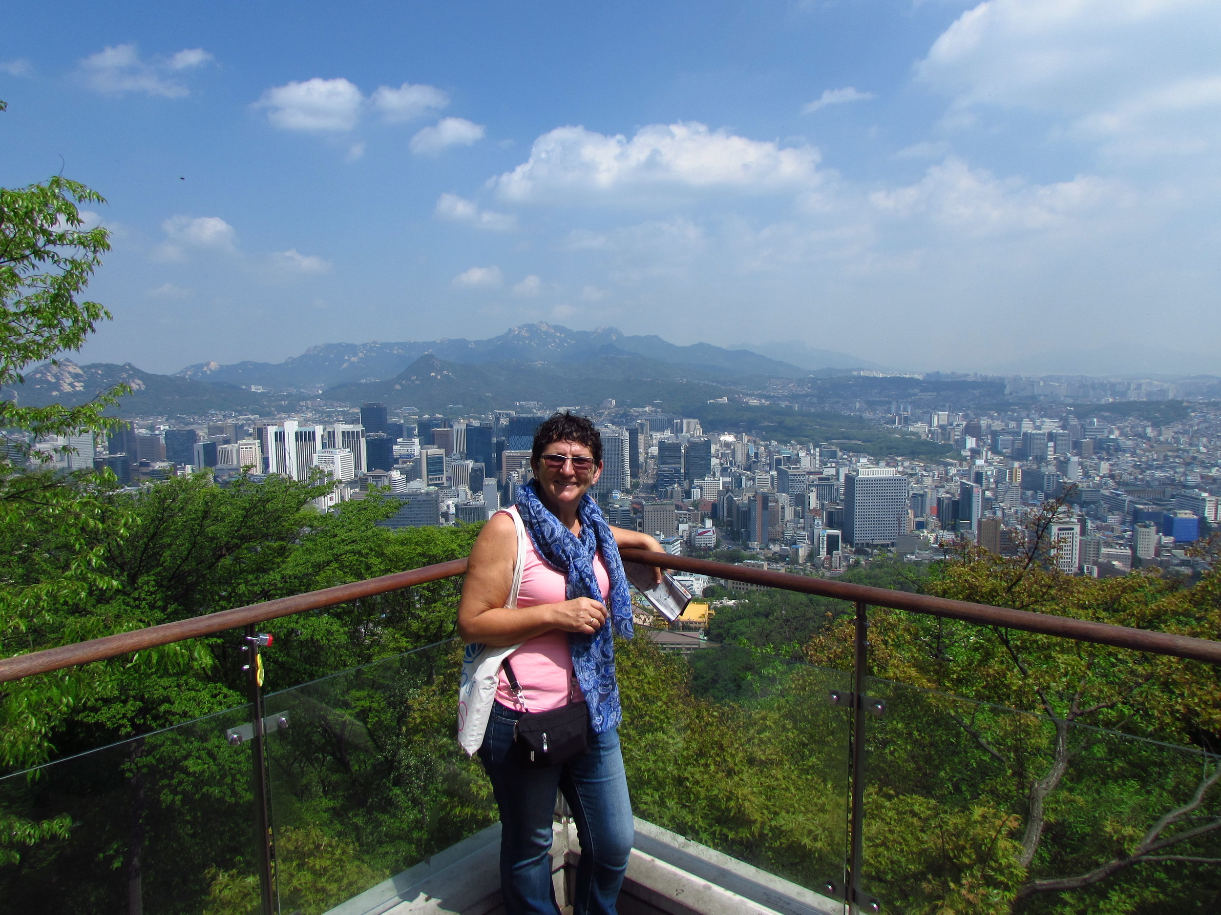 View from the Seoul Tower hill