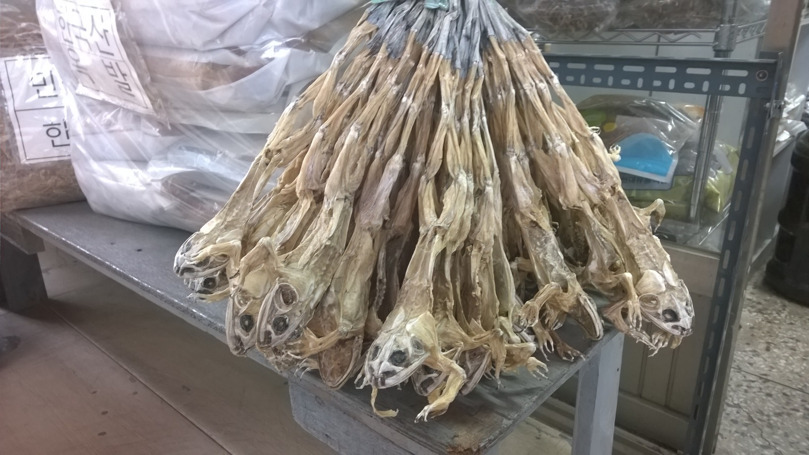 Dried frogs - the shop owner could not explain to me what good this would do to my health